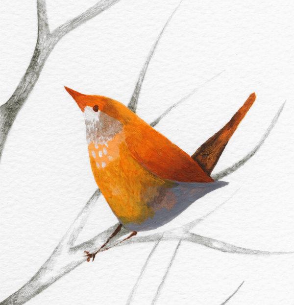 workshop bird2