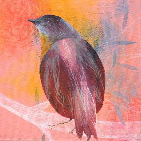 painted peach bird