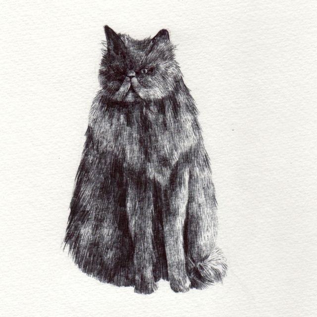 billy drawing