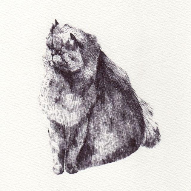 Odie drawing
