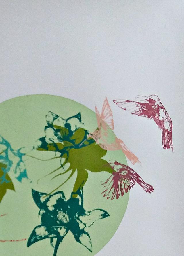 hummingbirds blog