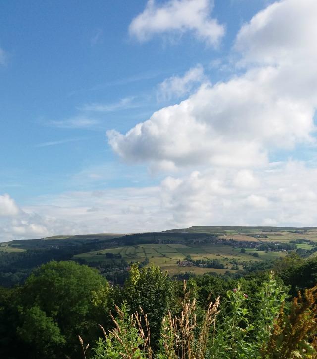 blog landscape 5