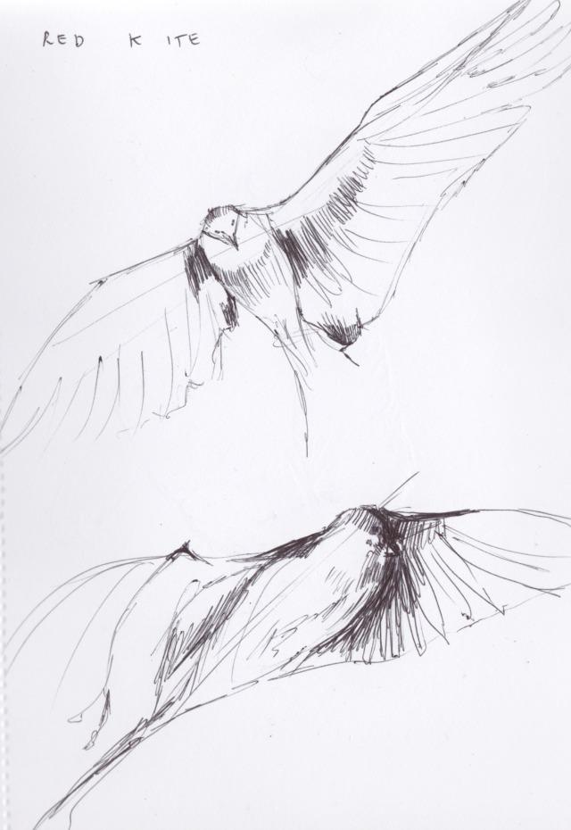 blog sketchbook 5