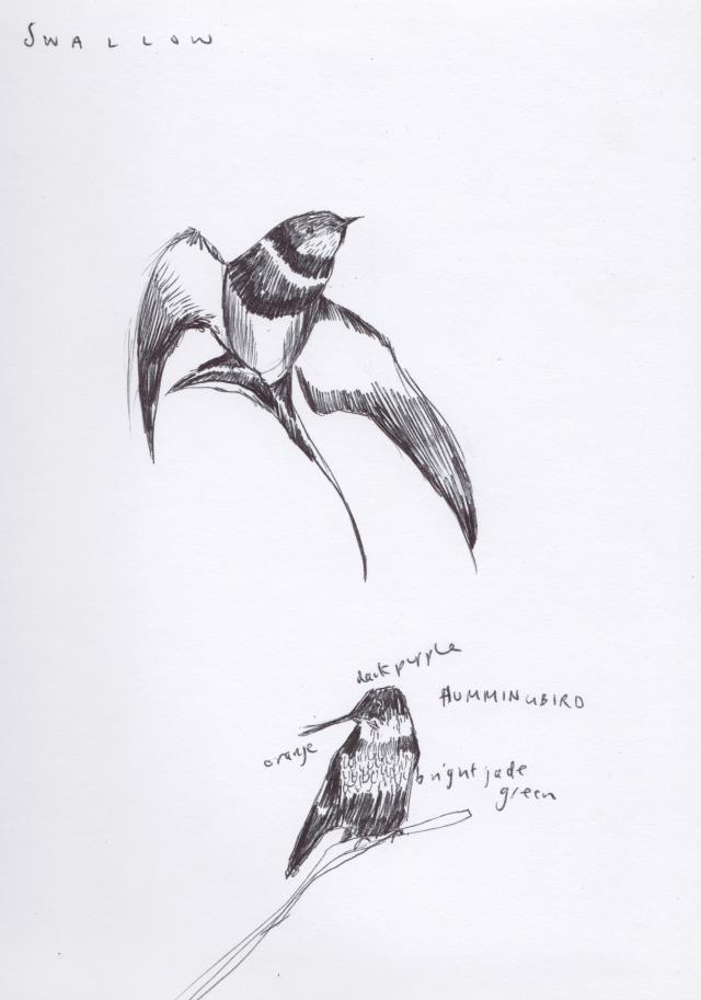 sketchbook blog 8