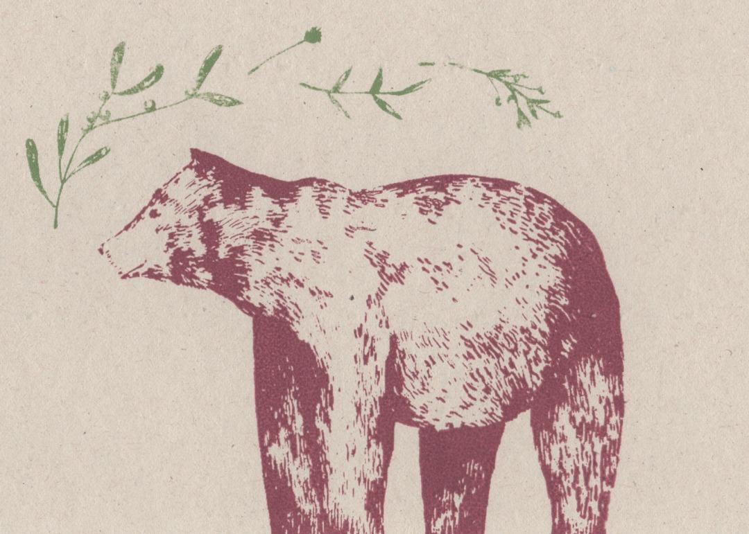 bear-and-mistletoe-card