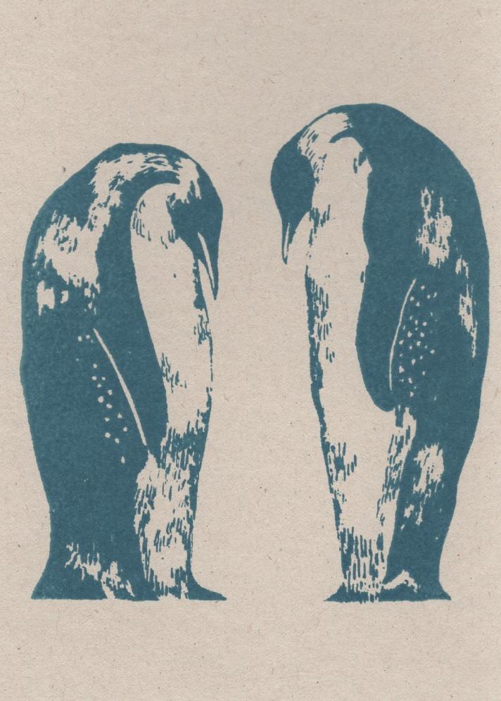 penguin-tuxedo-card