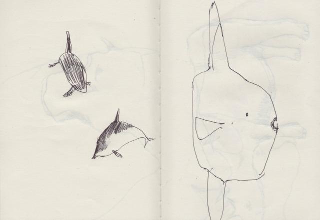 animals-blog