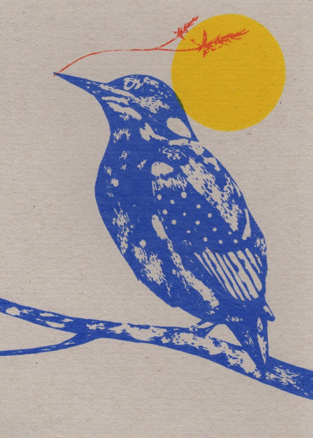 kingfisher and sunshine card