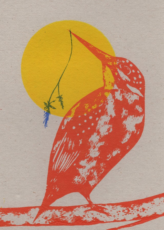 looking back kingfisher card