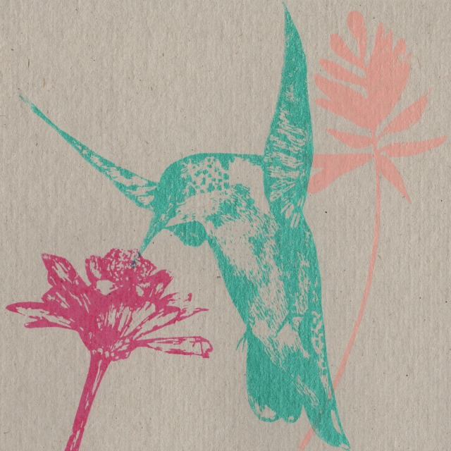 hummingbird and flight card blog